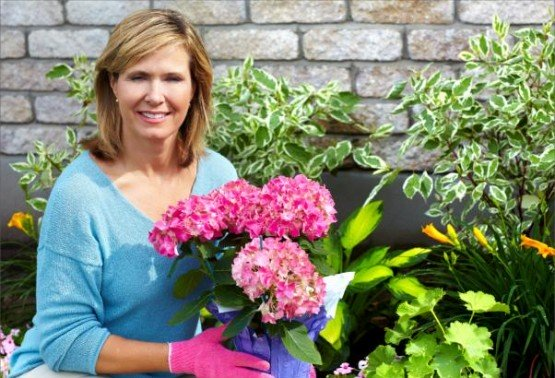 Garden Year Round in your Home