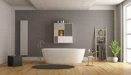 minimalist-white-and-gray-bathroom-EG3LPXT