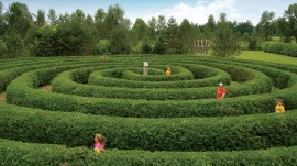 Saunders-Farm-maze-with-kids-credit-Ottawa-Tourism