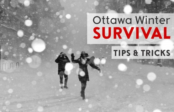 Ottawa Winter Survival
