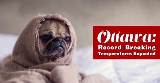 temperature1